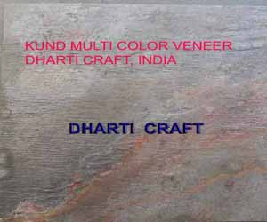 Indian Autumn Slate Veneer